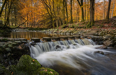 Stepping out of Autumn (peter_beagan) Tags: tollymore autumn stepping stones forest county down northern ireland waterfall river colours trees long exposure canon 5diii irish