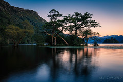Tree island @ Loch Lomond