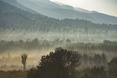 Morning smell (samal photography) Tags: mountain beauty in nature tranquil scene fog landscape sky forest outdoors scenics village lake tree day modern morning alberta america sunlight sunrise kurdistan composition photography adventure travel national park beautiful cliff