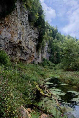 """Wutach Gorge • <a style=""""font-size:0.8em;"""" href=""""http://www.flickr.com/photos/66868863@N00/49060784928/"""" target=""""_blank"""">View on Flickr</a>"""