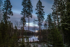 Winter scene II (mabuli90) Tags: finland nature landscape forest tree snow sky clouds longexposure sunset dusk