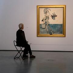 Contemplating art (Allan Rostron) Tags: hepworthwakefield davidhockney