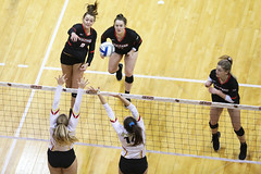 20191112-volleyball-vs-seton-hill-KLINE-BENSON-LYNCH-7K0A0585