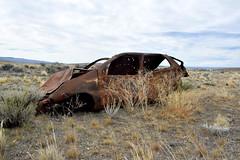 DSC_0615_Kopie (fritzenalg) Tags: ausgebrannt rost rust rusty ruta 40 schrott autowrack unfall accident