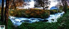 Cours d'eau, le Vert - vallée de Barétous (https://pays-basque-et-bearn.pagexl.com/) Tags: valléedubarétous nature nouvelleaquitaine aquitainelimousinpoitoucharentes arette quartierourdie colinebuch france hautbéarn pyrénéesatlantiques
