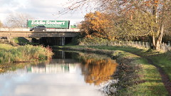 Bridge 147A (Wildlife Terry) Tags: m6 smart motorway j16 j17 hassallgreen sandbach cheshire trentmerseycanal cheshireringcanal towpathwalk amateurphotography autumn november2019 reflection tree water