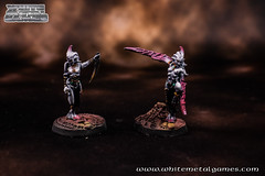 Refurb Daemonettes 0499-06 (whitemetalgames.com) Tags: whitemetalgames warhammer40k warhammer 40k warhammer40000 wh40k paintingwarhammer gamesworkshop games workshop citadel wmg white metal painting painted paint commission commissions service services svc raleigh knightdale northcarolina north carolina nc hobby hobbyist hobbies mini miniature minis miniatures tabletop rpg roleplayinggame rng warmongers wargamer warmonger wargamers tabletopwargaming tabletoprpg