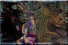 Pavo Real (seguicollar) Tags: art arte artedigital texturas virginiaseguí imagencreativa photomanipulation filterforge pavoreal ave pákarp