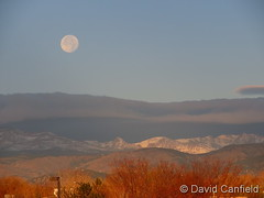 November 13, 2019 - The beaver moon prepares to set. (David Canfield)