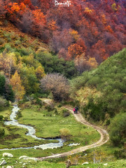 Ruta de otoño - Autumn trail (danielfi) Tags: somiedo asturias naturaleza nature landscape paisaje montaña otoño fall autumn colors colores ngc bosque forest seronda río river trail ruta trekking