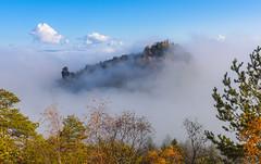Island in the sea of fog (Uwe Kögler) Tags: saxony sächsischeschweiz sachsen felsen fog nebel nebelstimmung germany gohrisch papststein hunskirche herbst landscape landschaft laubfärbung elbsandsteingebirge elbe