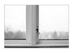 Windows on a rainy day (K.Pihl) Tags: leicam5 50mmsummiluxf14 monochrome windows rain film hc110b pellicolaanalogica schwarzweiss bw kodaktmax400 analog blackwhite