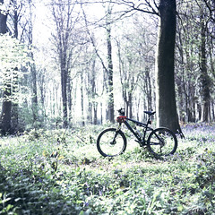 a Bike in the woods... (»alex«) Tags: bike bicycle mtb mountainbike cube woods woodland forest covertwood bluebells spring ride film lomography 120 400asa scan scanned countryside kent kentdowns northdowns barham zeissikon ikonta52016