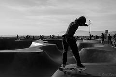 DSC_0045 (Kevin Kasmai) Tags: usa california la los angeles beach sun fun sand sport outdoors water pier surf skate palm travel destination tourist tourism nikon photography