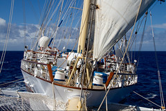 From the bowsprit of Star Clipper's barquentine Star Flyer; North Atlantic (Michael Leek Photography) Tags: ship sailing sailingship tallship barquentine starflyer starclippers northatlantic atlantic ocean vessel passengership passengervessel sail cruiseship cruising workingboat workboat liner merchantship merchantvessel michaelleek michaelleekphotography