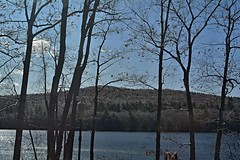 2019_1113Looking-Out0001 (maineman152 (Lou)) Tags: westpond iceafterthestorm pondview nature naturephoto naturephotography weather badweather cold coldweather landscape landscapephoto landscapephotography novemberweather november maine