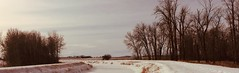 Autumn 🍂 Walks (Mr. Happy Face - Peace :)) Tags: trees snow canada canal fresh albertabound art2019