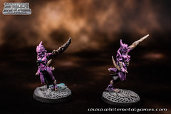 Refurb Daemonettes 0496-05 (whitemetalgames.com) Tags: whitemetalgames warhammer40k warhammer 40k warhammer40000 wh40k paintingwarhammer gamesworkshop games workshop citadel wmg white metal painting painted paint commission commissions service services svc raleigh knightdale northcarolina north carolina nc hobby hobbyist hobbies mini miniature minis miniatures tabletop rpg roleplayinggame rng warmongers wargamer warmonger wargamers tabletopwargaming tabletoprpg