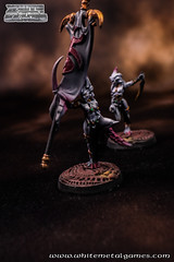 Refurb Daemonettes 0499-05 (whitemetalgames.com) Tags: whitemetalgames warhammer40k warhammer 40k warhammer40000 wh40k paintingwarhammer gamesworkshop games workshop citadel wmg white metal painting painted paint commission commissions service services svc raleigh knightdale northcarolina north carolina nc hobby hobbyist hobbies mini miniature minis miniatures tabletop rpg roleplayinggame rng warmongers wargamer warmonger wargamers tabletopwargaming tabletoprpg