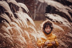 November backyard (Elizabeth Sallee Bauer) Tags: nature active autumn beautyinnature child childhood cold fall fun girl grass green happiness kid leaves november outdoors outside overhead playing portrait trees yellow youth
