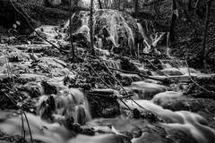water routes bw (husiphoto) Tags: wasser water bach creek kaskade cascade landschaft landscape outside natur nature nikon nikkor d750 baum tree stein stone wald forest bw blackandwhite