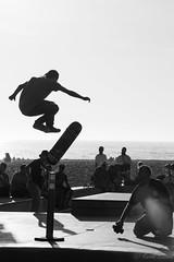 DSC_0055 (Kevin Kasmai) Tags: usa california la los angeles beach sun fun sand sport outdoors water pier surf skate palm travel destination tourist tourism nikon photography