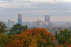 Home Town (Croydon Clicker) Tags: autumn trees colour golden town buildings skyscrapers offices apartments viewpoint croydon london surrey nikon nikkor