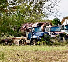 """Hey, MAC"" -  HTT (donnacurrall) Tags: trucks abandoned old rusty macktruck ford trashtruck truckthursday trees"