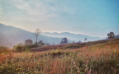 Peaceful morning in da farm (Nateerasak) Tags: morning mountain landscape thailand asia southeastasia northeast chaiyaphum farm