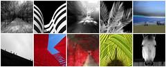 Gallery's Top Ten / Las 10 favoritas en la galería (ix 2019) Tags: fdsflickrtoys israfel67 méxico mexico mosaic mosaico topten favoritas diez ten galería gallery favs fav