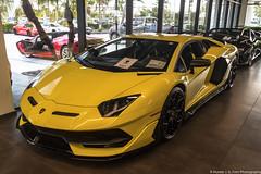 Lamborghini Aventador SVJ LP770-4 (Hunter J. G. Frim Photography) Tags: supercar florida hypercar palm beach lamborghini aventador svj black yellow v12 italian carbon coupe wing lp7704 lamborghiniaventador lamborghiniaventadorsvj lamborghiniaventadorsvjlp7704 giallo nero