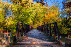 Autumn Arrives in Indiana (13) (tquist24) Tags: elkhart hdr indiana nikon nikond5300 outdoor studebakerpark autumn bridge color colorful fall fence footbride geotagged outside park river sky tree trees water shadow shadows leaf leaves