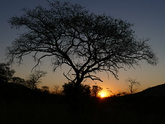 P1200503b (o spot) Tags: 2019 southafrica kruger best sunset