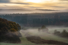 dark times (Woewwesch) Tags: sunrise outside morningmist mist foggy layers eifel trees hills autumn dark colors valley sony