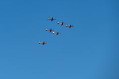 Roulettes - First Air Display (Serendigity) Tags: adelaide australia edinburgh pc21 pilatus raafbase roulettes royalaustralianairforce sa southaustralia aerobatics airshow aviation display flying flyingdisplay formationflying