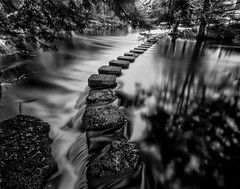 Stepping Stones-Middle Branch, Ontonagon River (Northwoods Apparition) Tags: harmantitan4x5 pinhole 4x5 largeformat pmkpyro