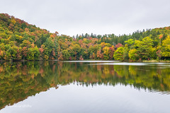 The Pogue Pond D85_9736.jpg (Mobile Lynn) Tags: reflection trees fall autumnal autumn woodstock vermont unitedstatesofamerica