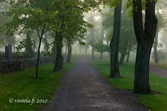 vintola photography (vintola) Tags: kirkkokirkkopuisto leica naantali sumu syksy vanhakaupunki nådendal finland finnland vintola park fog nebel dimma tree träd baum