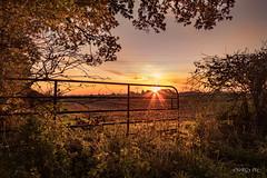 sunrise meadow (deltic17) Tags: sunrise morning canon photo field farming colours