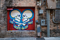 Alley Color (-Dons) Tags: austin texas unitedstates federico muralart streetart tx usa skull door alley downtown