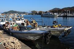 Small harbor (Teruhide Tomori) Tags: 滋賀県 近江八幡 沖島 島 琵琶湖 漁船 ボート 日本 関西 fishingboat okishimaisland lakebiwa shiga biwako japan japon water evening lake omihachiman