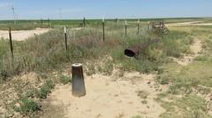 Tri-Point Landscape (Union County, New Mexico; Cimarron County, Oklahoma; and Dallam County, Texas) (courthouselover) Tags: texas tx westtexas texaspanhandleplains texaspanhandle dallamcounty statecorners tripoints landscapes benchmarks surveymarkers nationalgeodeticsurvey ngs oklahoma ok cimarroncounty oklahomapanhandle newmexico nm unioncounty greatplains northamerica unitedstates us kiowanationalgrassland ritablancanationalgrassland nationalgrasslands