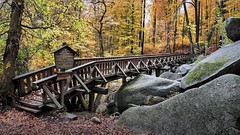 the journey is the destination (JogiExperience) Tags: odenwald lautertal wald forest woods woodlands herbst autumn fall brücke bridge natur nature landschaft landscape jogiexperience fuji xh1