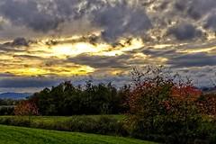 Jeszcze Jesień 2 (jadwigatrzeszkowska) Tags: natura krajobraz widok chmury drzewa pole łąka jesień braunhausen bebra hesja niemcy jadwigatrzeszkowska panasonic