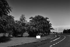 onderweg-4 (Don Pedro de Carrion de los Condes !) Tags: donpedro d810 a6 parking oeverwal leleystad zwwit 1450mm fascinatie basic onderweg