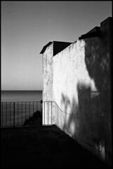(analogicmoment) Tags: 35mm filmphotography blackandwhite bw kodaktrix400 homedeveloped kodakhc110b ricohff1 pointandshoot ishootfilm buyfilmnotmegapixels filmisnotdead