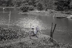 🚲 b/n (rraass70) Tags: canon d700 retoques rio agua ninbinh deltadelriorojo vietnam