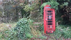 Red Phone Box, Lewiston, Drumnadrochit, Oct 2019 (allanmaciver) Tags: red telephone box lewiston drumandrochit iconic working overgrown allanmaciver