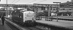 55007 R00758 Kings Cross D210bob  bw (D210bob) Tags: 55007 r00758 kingscross d210bob bw blackwhitephotography blackwhite monochrome monochromephotography railwayphotographs railwayphotography railwayphotos railwaysnaps class55 deltic englishelectric type5 eastcoastmainline lightengine
