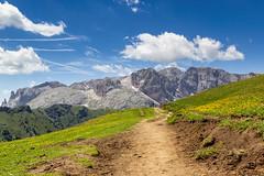 Verso il Molignon (Explore) (cesco.pb) Tags: valdifassa molignon catinaccio valduron dolomiten dolomiti dolomites alps alpi trentino italia italy canon canoneos60d tamronsp1750mmf28xrdiiivcld montagna mountains